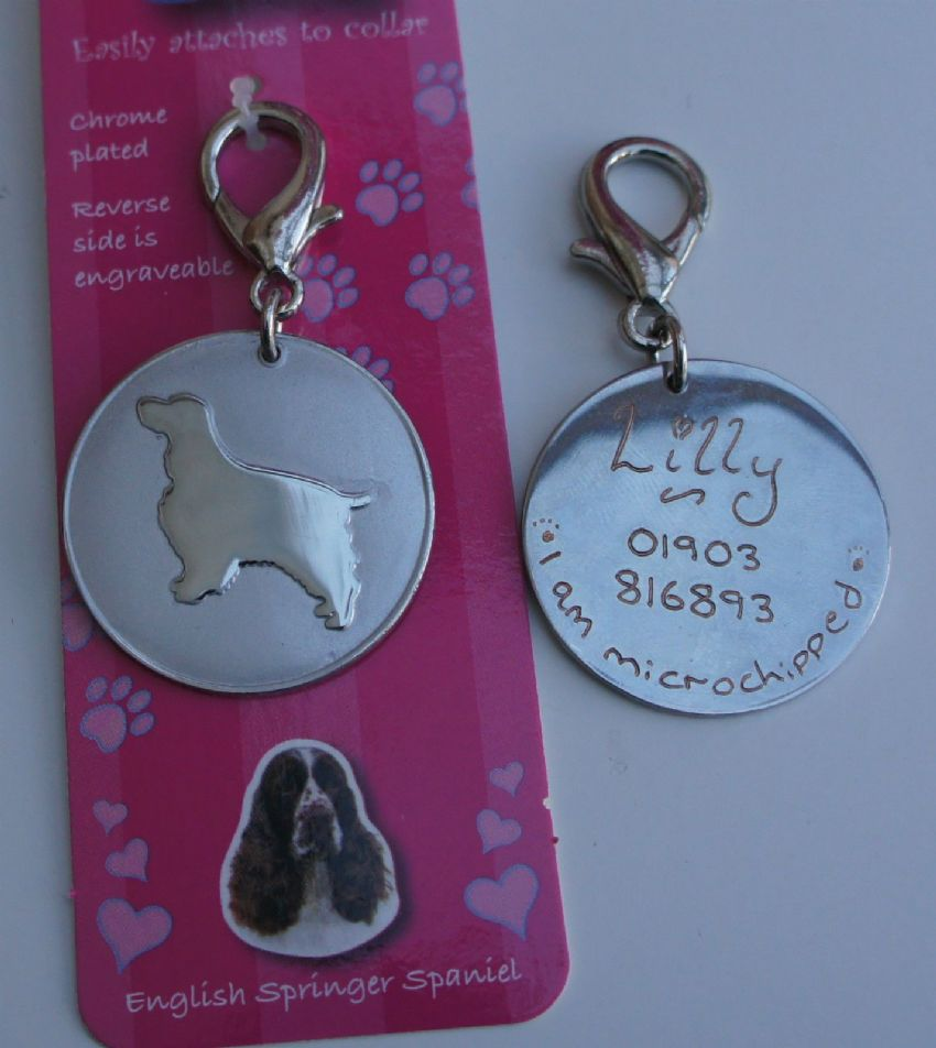 ENGLISH SPRINGER SPANIEL ID TAG -  ENGRAVED FREE